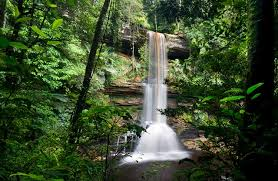 Maliau Basin: Trekking Adventures