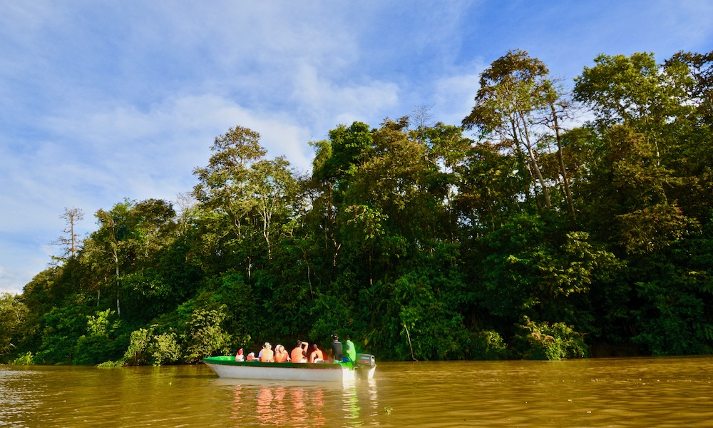 Kinabatangan River Cruise – A Must Do in Sabah