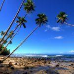 Pulau Tiga Island, Sabah: Adventure Holidays 2019