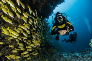 Top 8 Sabah Diving Places Every Traveler Should Know